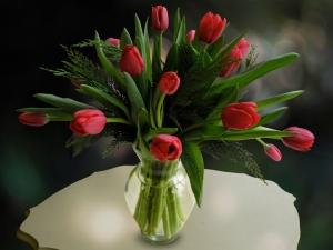 Xmas_Floral_2