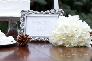 Winter Love - Inspiration Shoot-6