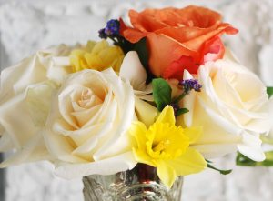 Daffodils, muscarie, roses and freesia