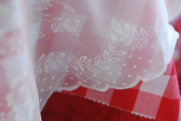 Lace Over Gingham