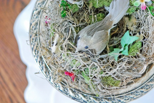 Nest with Bird